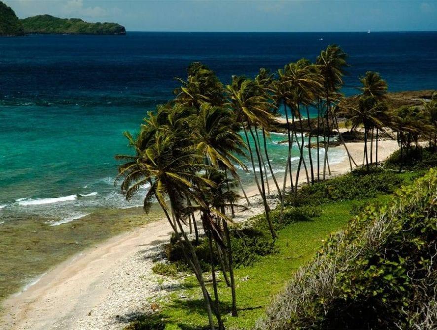 Petit Nevis 1