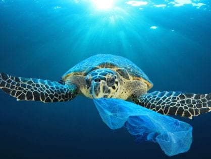 The Problem with Plastic