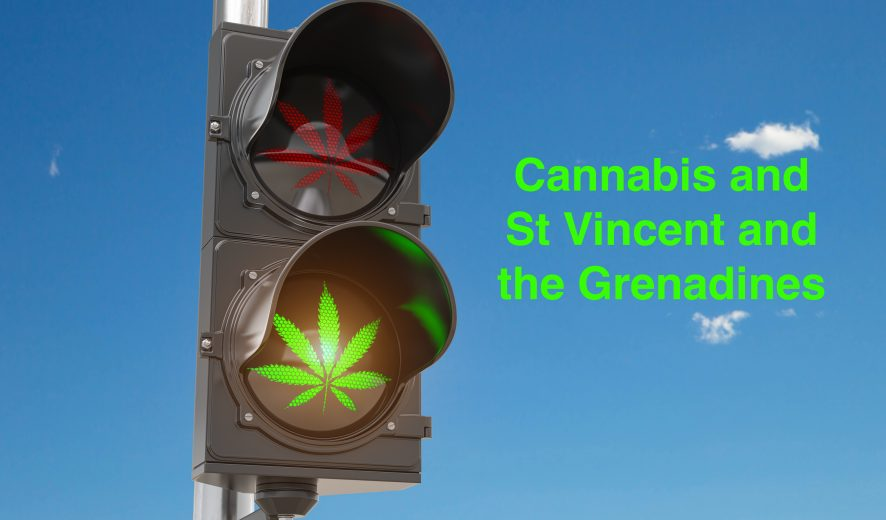 St. Vincent's Medical Marijuana Industry Lifts Off with Amnesty